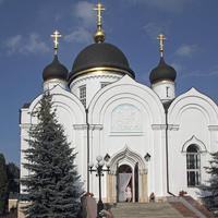 Троицкий храм. Задонский Свято-Тихоновский Преображенский женский монастырь