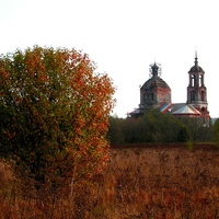 Церковь Рождества Пресвятой Богородицы. Половецкое.